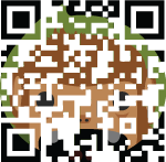 Traditional QR Code